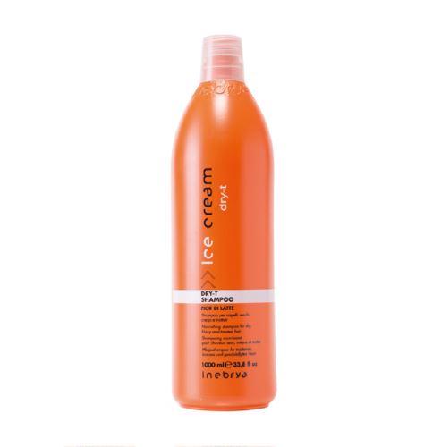 Inebrya DRY-T Shampoo